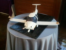 Custom Airplane Cake